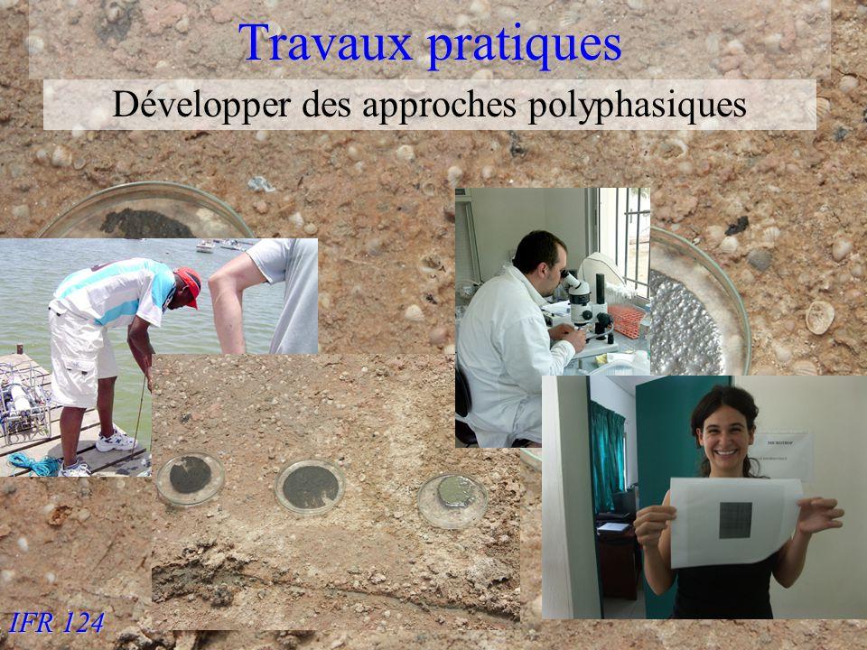 IFR 124 Travaux pratiques Développer des approches polyphasiques