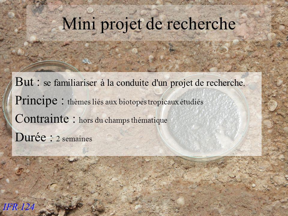 IFR 124 Mini projet de recherche But : se familiariser à la conduite d un projet de recherche.
