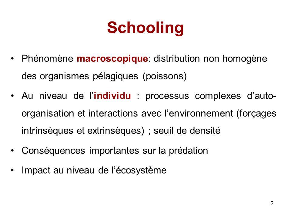 2 Schooling Phénomène macroscopique: distribution non homogène des organismes pélagiques (poissons) Au niveau de lindividu : processus complexes dauto