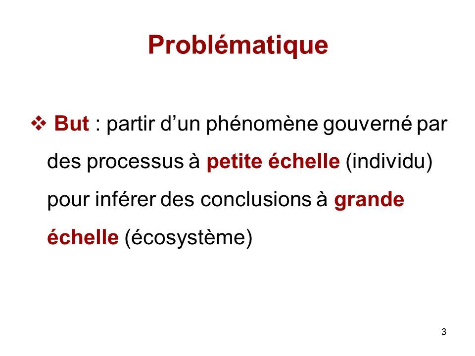 3 But : partir dun phénomène gouverné par des processus à petite échelle (individu) pour inférer des conclusions à grande échelle (écosystème) Problém