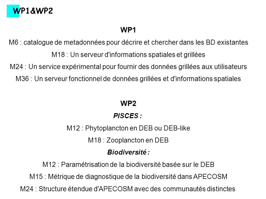 WP2 WP2 Assimilation : M9 : Estimation quantitative des paramètres associés à la distribution verticale des trois communautès génériques d APECOSM (acoustique) M9 : Inclusion des données de tagging dans APECOSM-Thons M18 : Validation d APECOSM générique utilisant différentes données (acoustique, contenu stomacal,...) M18 : Estimation de paramètres pour les 4 thonidés utilisant les données de pêches et de capture/recapture dans l Indien M24 : Validation du modèle dans le Pac./Atl.à partir des données de pêche Schooling/Swarming : M18 : Description mécaniste du schooling/swarming M30 : Réponse fonctionnelle mécaniste dans APECOSM incluant le comportement aggrégatif