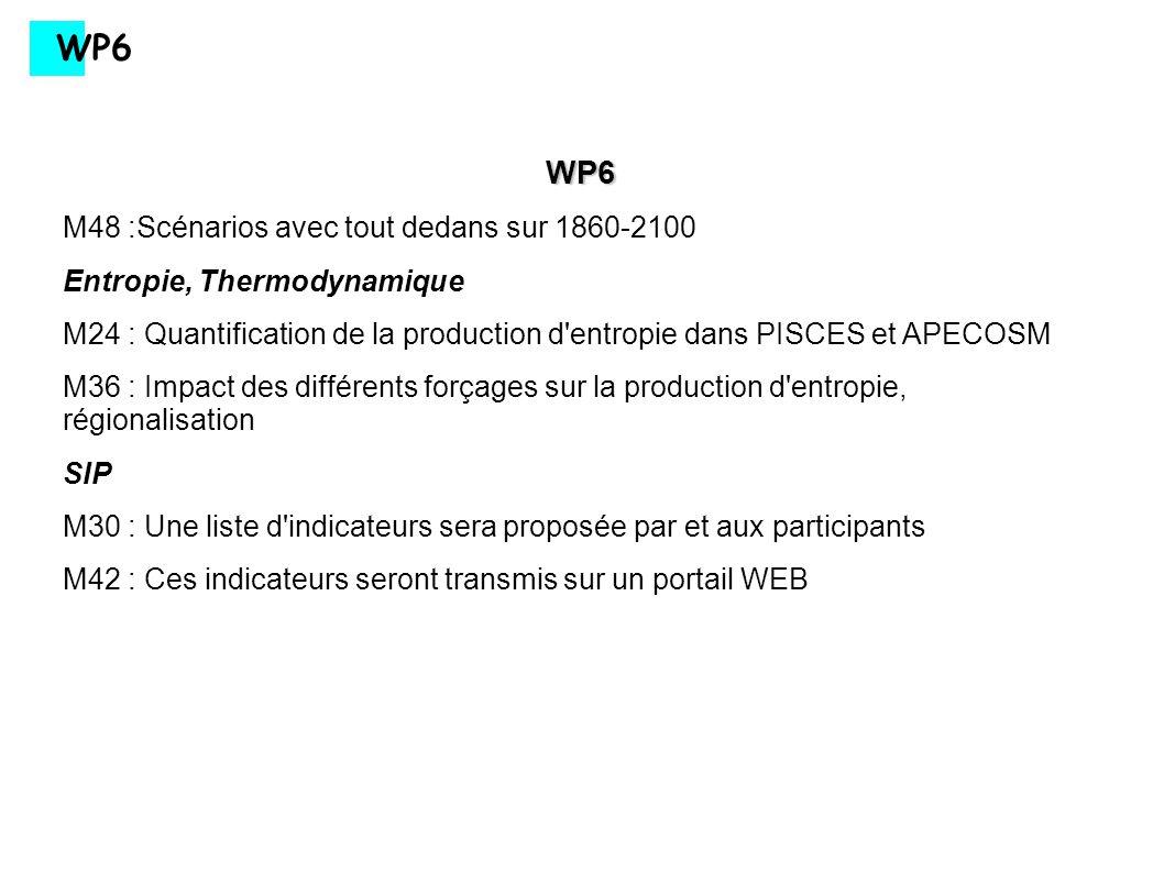 WP6 WP6 M48 :Scénarios avec tout dedans sur 1860-2100 Entropie, Thermodynamique M24 : Quantification de la production d'entropie dans PISCES et APECOS