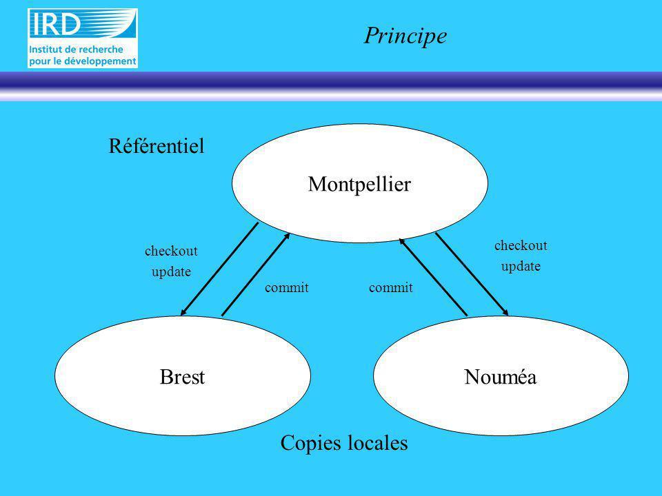 Mode de connexion Mode daccès: –Local (NFS) –Serveur (telnet et chroot) –Sécurisé Kerberos SSH Utilisateurs –Anonymous (:pserver:anoncvs@cvs.mpl.ird.fr:/projet) –Référencé (:pserver:jgrelet@cvs.mpl.ird.fr:/projet)