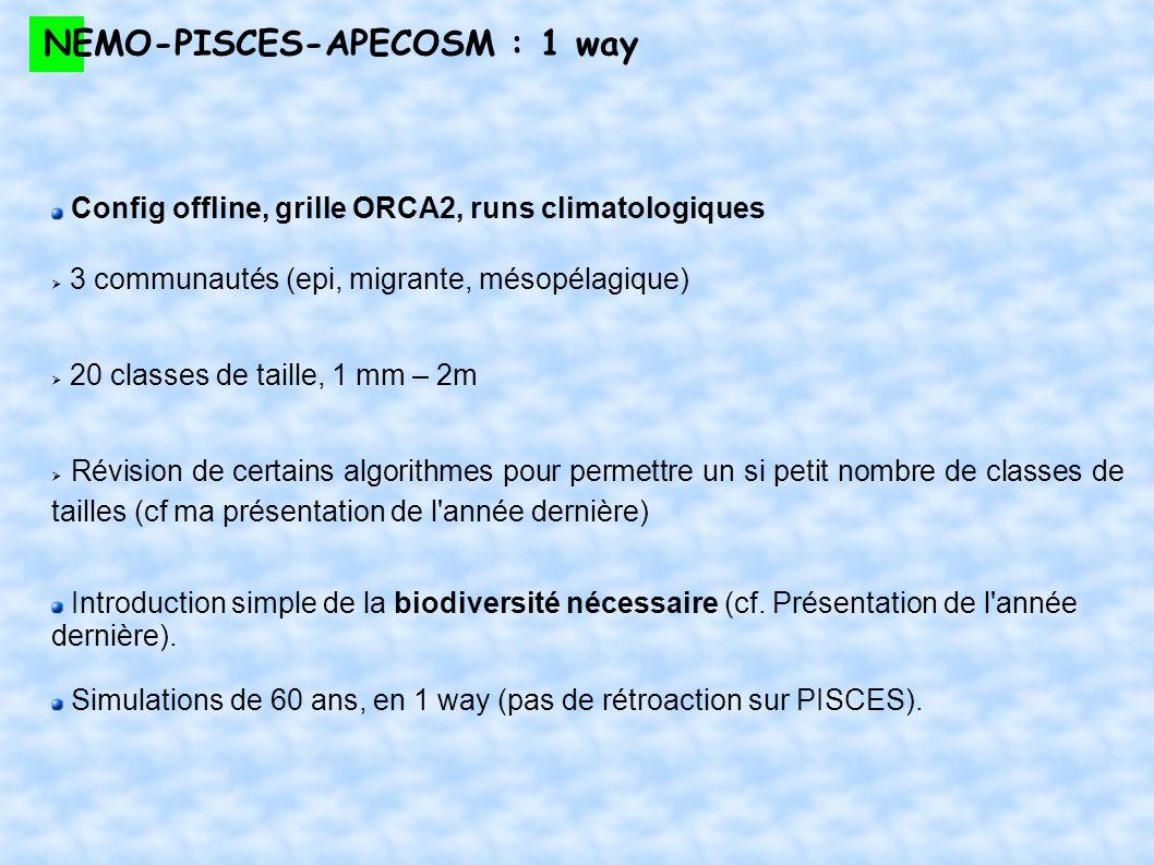 NEMO-PISCES-APECOSM : 1 way Config offline, grille ORCA2, runs climatologiques 3 communautés (epi, migrante, mésopélagique) 20 classes de taille, 1 mm
