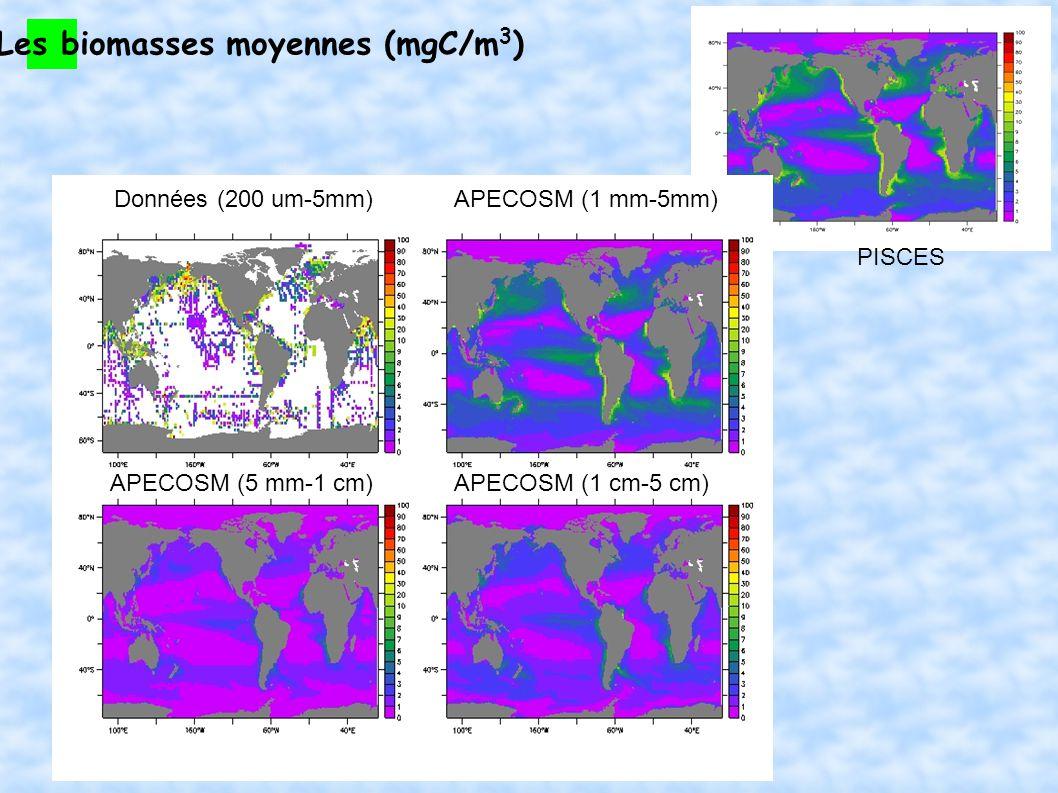 Les biomasses moyennes (mgC/m 3 ) Données (200 um-5mm)APECOSM (1 mm-5mm) APECOSM (1 cm-5 cm)APECOSM (5 mm-1 cm) PISCES