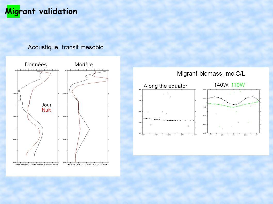 NEMO-PISCES-APECOSM : 2 ways - Prologue Fermeture PISCESBroûtage APECOSM Mesozooplancton Grosses particules Fermeture PISCESBroûtage APECOSM Diatomées Broûtage APECOSM Microzooplancton