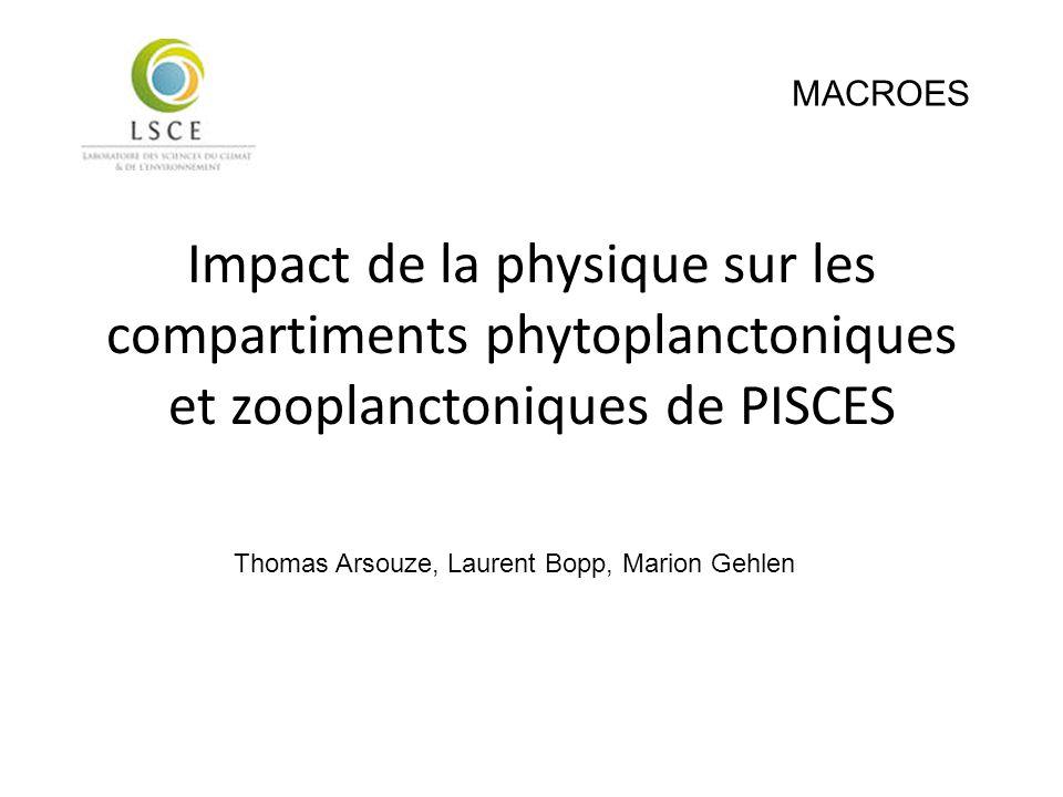 Impact de la physique sur les compartiments phytoplanctoniques et zooplanctoniques de PISCES Thomas Arsouze, Laurent Bopp, Marion Gehlen MACROES