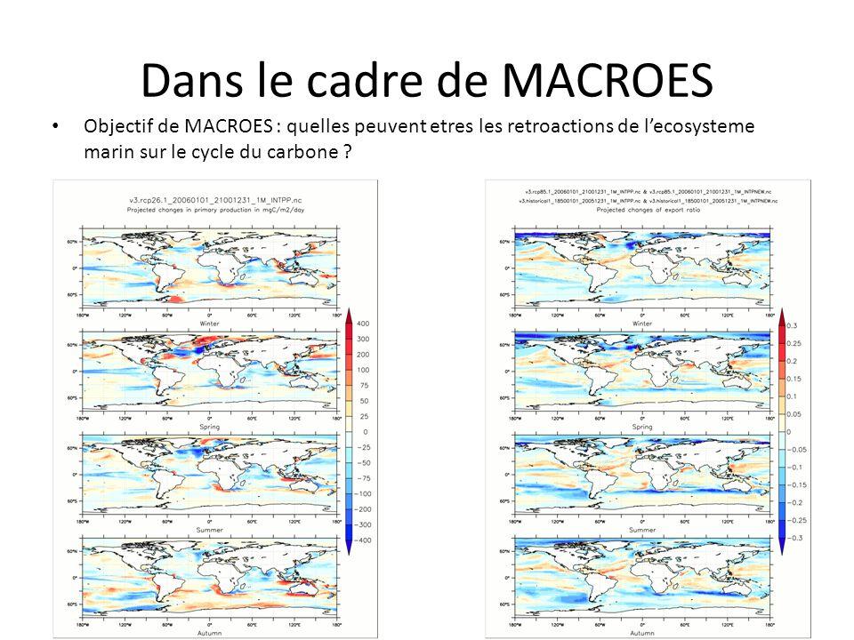 Dans le cadre de MACROES Objectif de MACROES : quelles peuvent etres les retroactions de lecosysteme marin sur le cycle du carbone ?