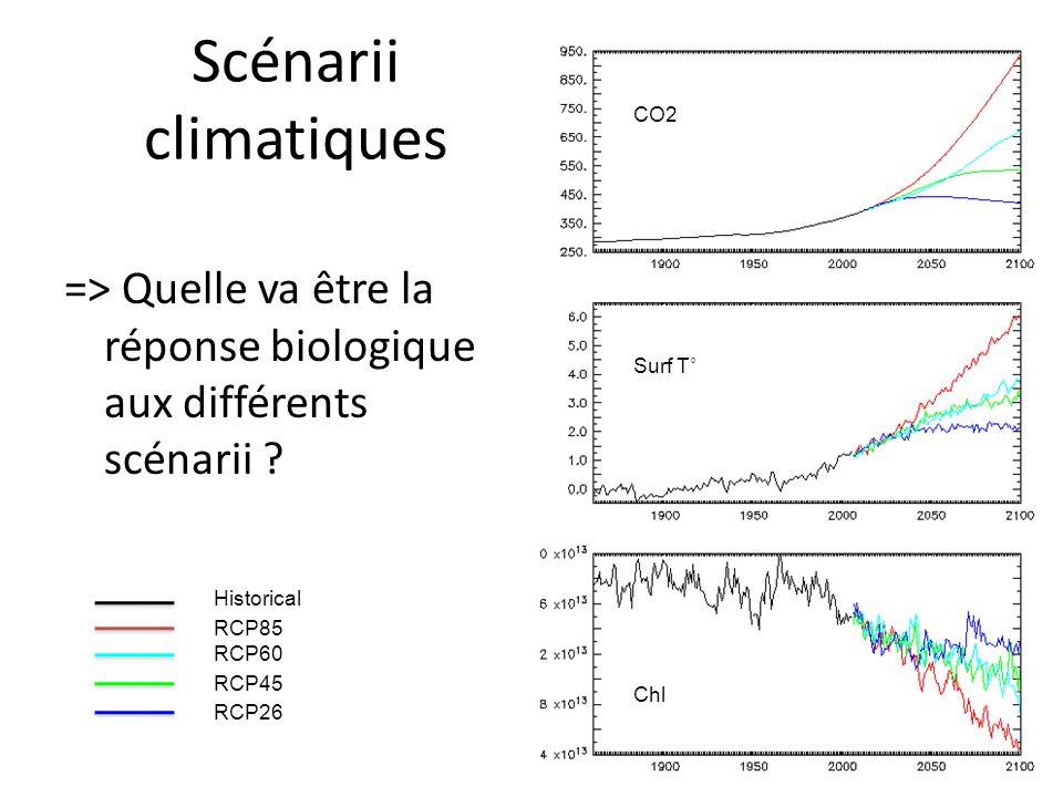=> Quelle va être la réponse biologique aux différents scénarii ? Scénarii climatiques Historical RCP85 RCP60 RCP45 RCP26 CO2 Surf T˚ Chl