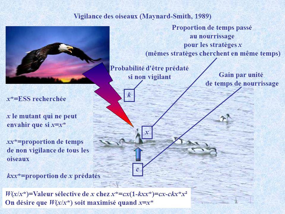 Vigilance des oiseaux (Maynard-Smith, 1989) k Probabilité d'être prédaté si non vigilant Proportion de temps passé au nourrissage pour les stratèges x