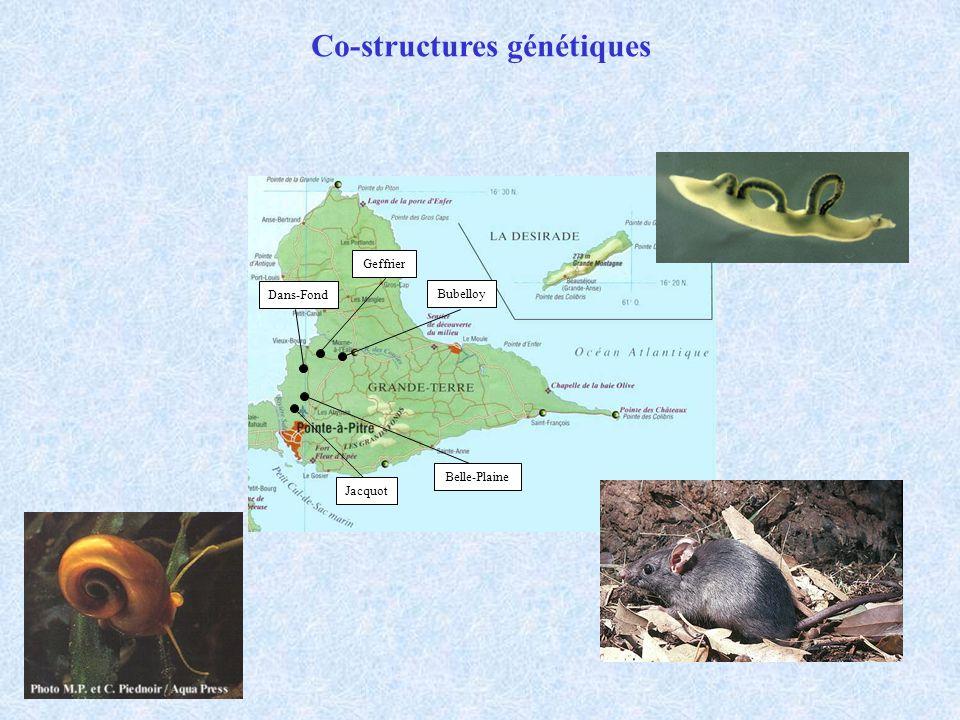 Jacquot Belle-Plaine Dans-Fond Geffrier Bubelloy Co-structures génétiques