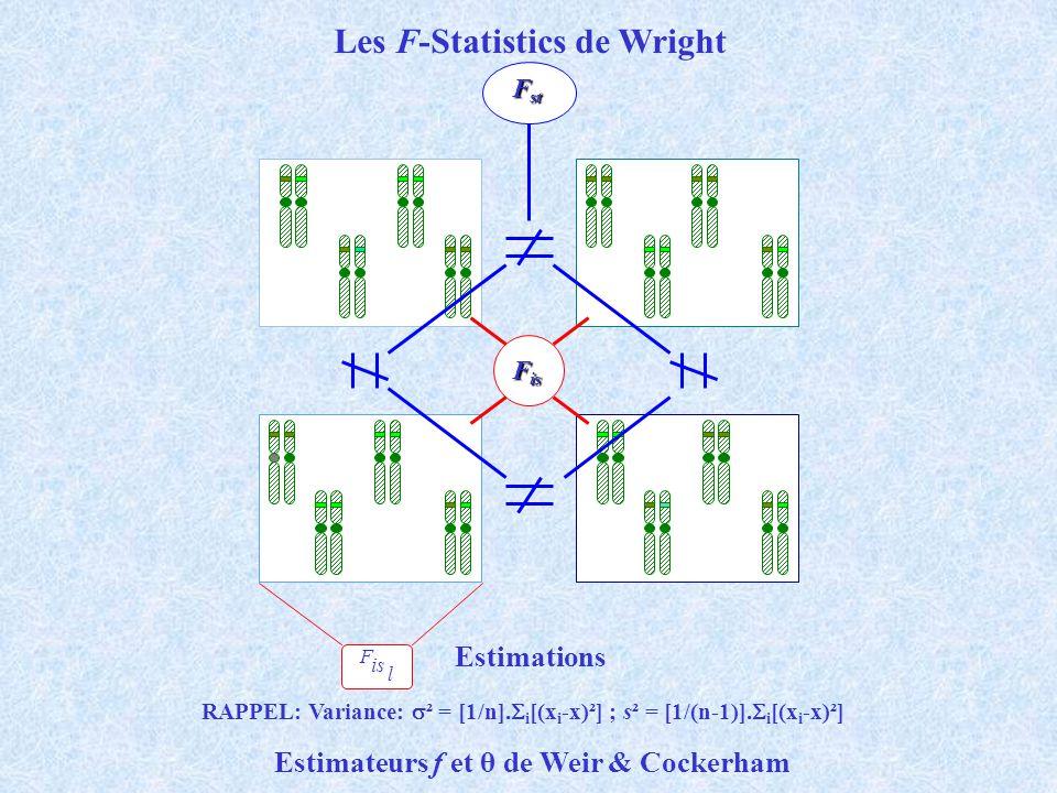Les F-Statistics de Wright F is l F is F st Estimations RAPPEL: Variance: ² = [1/n]. i [(x i -x)²] ; s² = [1/(n-1)]. i [(x i -x)²] Estimateurs f et θ