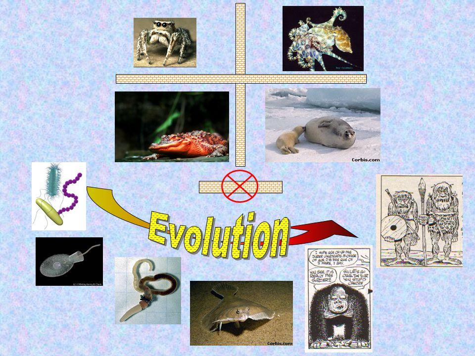 Régulation intra-habitat = Soft selection Régulation extra-habitat = Hard selection