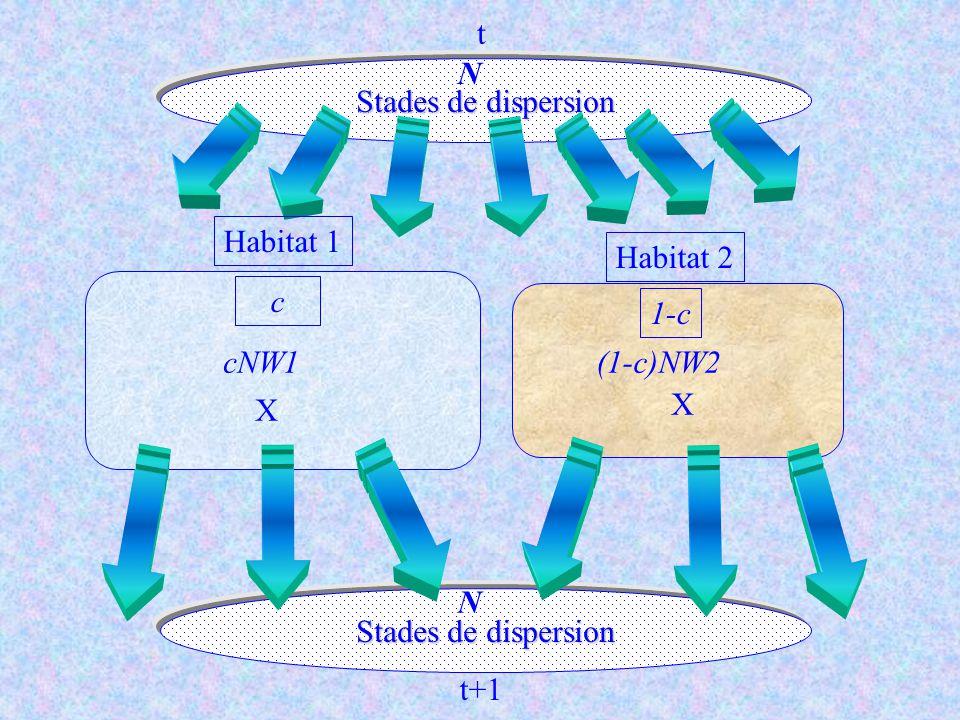 Stades de dispersion c 1-c Habitat 1 Habitat 2 cNW1(1-c)NW2 N X X Stades de dispersion t t+1 N cN (1-c)N
