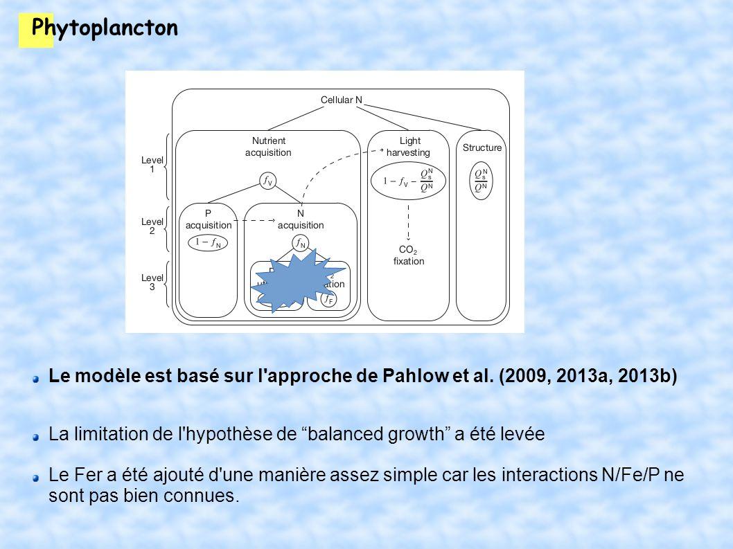 Phytoplancton Le modèle est basé sur l approche de Pahlow et al.