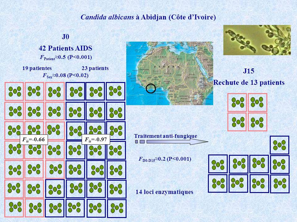 Candida albicans à Abidjan (Côte dIvoire) 42 Patients AIDS 19 patientes 23 patients J0 Traitement anti-fungique J15 Rechute de 13 patients F Patient 0