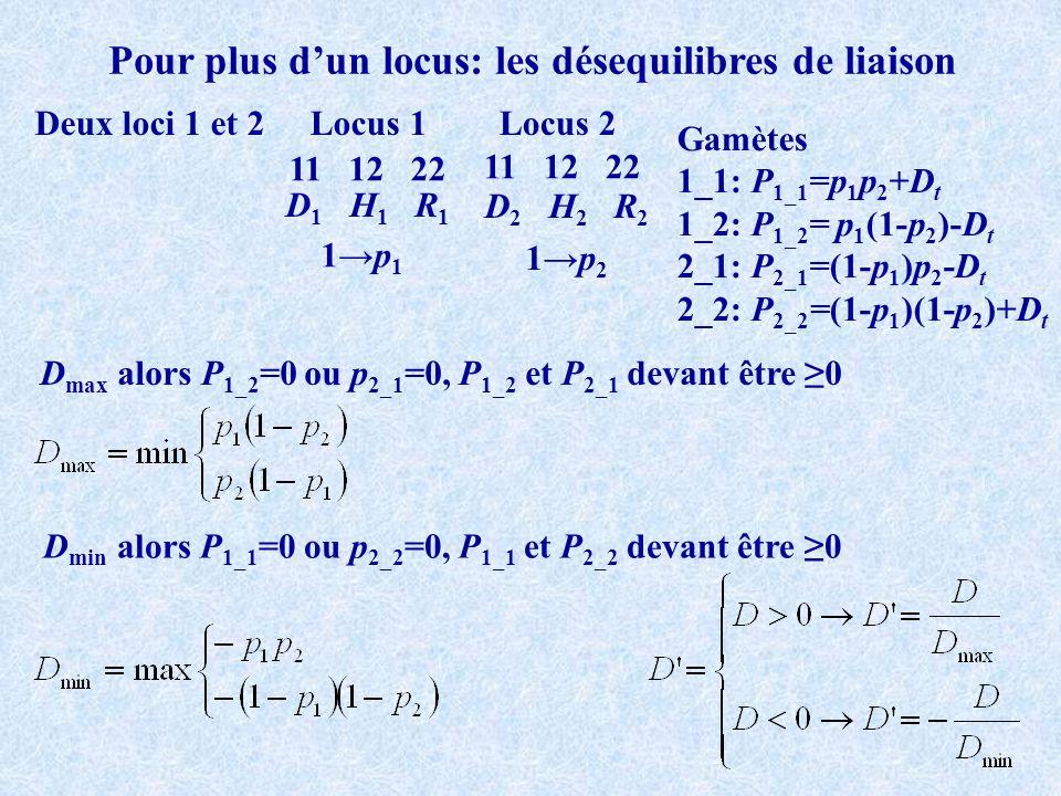 Pour plus dun locus: les désequilibres de liaison Deux loci 1 et 2 11 12 22 Locus 1Locus 2 D 1 H 1 R 1 D 2 H 2 R 2 1p 1 1p 2 Gamètes 1_1: P 1_1 =p 1 p