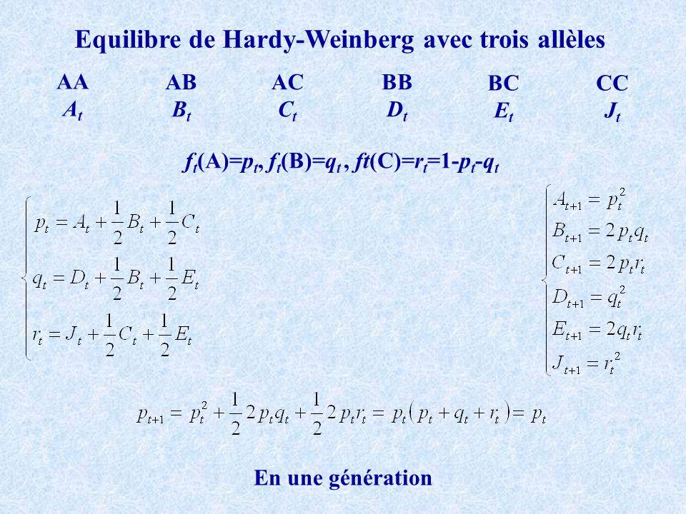 Pour plus dun locus: les désequilibres de liaison Deux loci 1 et 2 11 12 22 Locus 1Locus 2 D 1 H 1 R 1 D 2 H 2 R 2 1p 1 1p 2 Si le taux de recomninaison est r et la reproduction panmictique N grand Gamètes 1_1: P 1_1 =p 1 p 2 +D t 1_2: P 1_2 = p 1 (1-p 2 )-D t 2_1: P 2_1 =(1-p 1 )p 2 -D t 2_2: P 2_2 =(1-p 1 )(1-p 2 )+D t