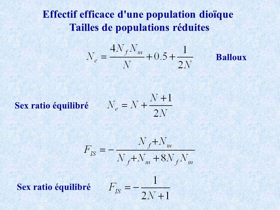 Effectif efficace d une population dioïque Tailles de populations réduites Balloux Sex ratio équilibré