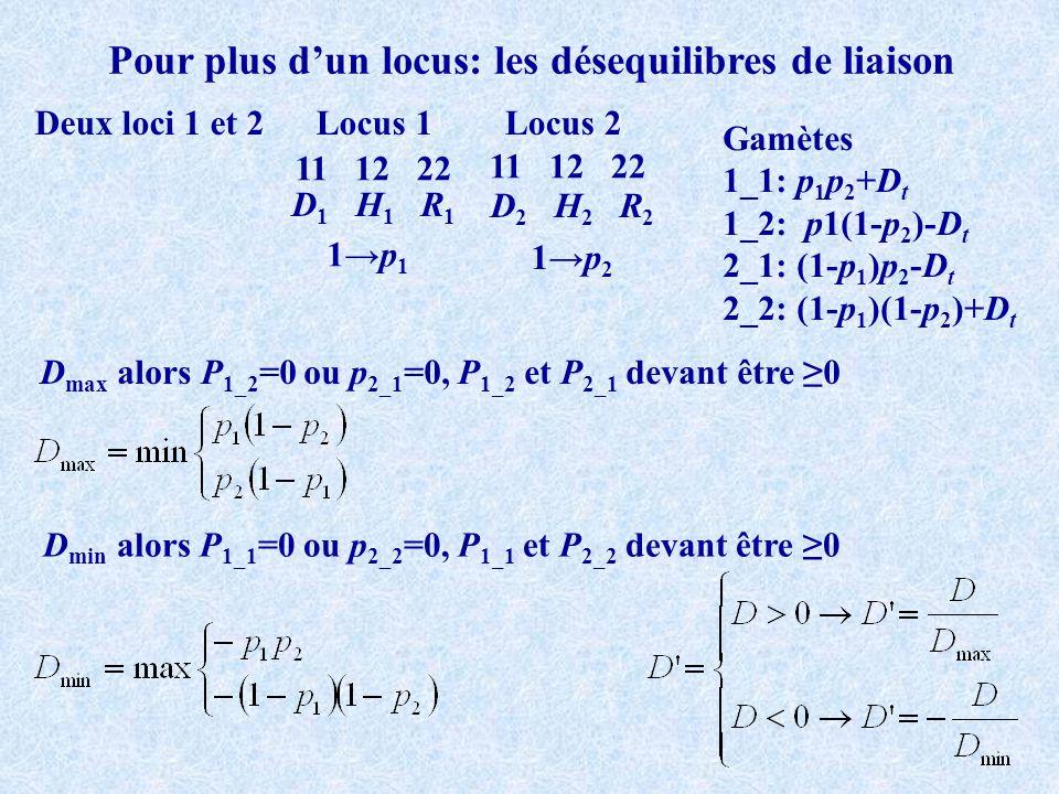 Pour plus dun locus: les désequilibres de liaison Deux loci 1 et 2 11 12 22 Locus 1Locus 2 D 1 H 1 R 1 D 2 H 2 R 2 1p 1 1p 2 Gamètes 1_1: p 1 p 2 +D t 1_2: p1(1-p 2 )-D t 2_1: (1-p 1 )p 2 -D t 2_2: (1-p 1 )(1-p 2 )+D t D max alors P 1_2 =0 ou p 2_1 =0, P 1_2 et P 2_1 devant être 0 D min alors P 1_1 =0 ou p 2_2 =0, P 1_1 et P 2_2 devant être 0