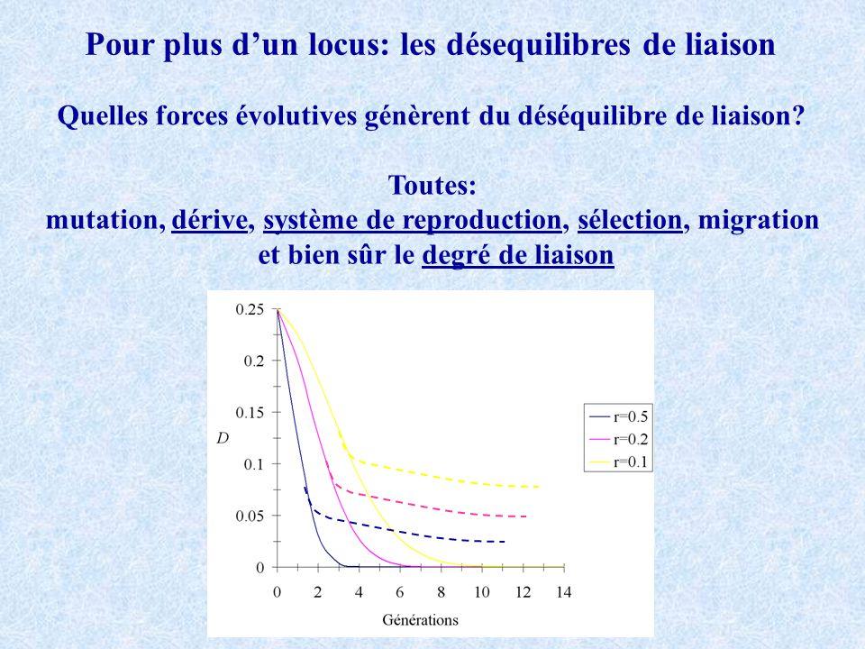 Pour plus dun locus: les désequilibres de liaison Quelles forces évolutives génèrent du déséquilibre de liaison.