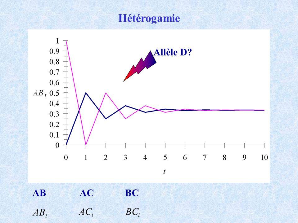 Hétérogamie ABACBC AB t AC t BC t Allèle D