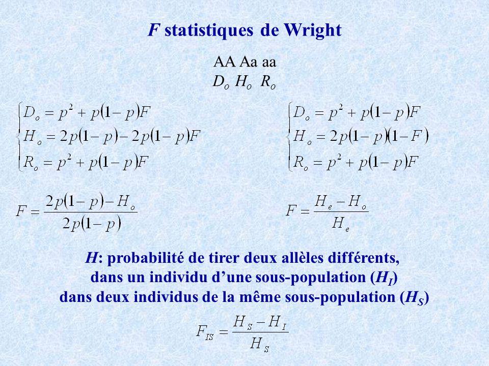 F statistiques de Wright AA Aa aa D o H o R o H: probabilité de tirer deux allèles différents, dans un individu dune sous-population (H I ) dans deux individus de la même sous-population (H S )