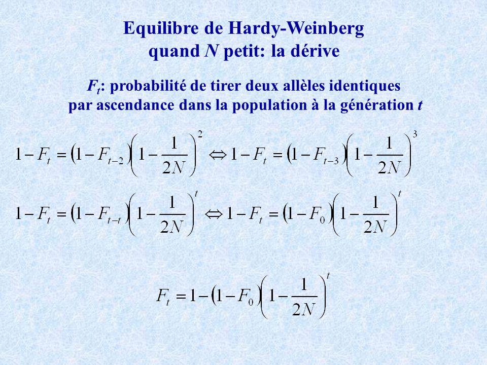 Equilibre de Hardy-Weinberg quand N petit: la dérive F t : probabilité de tirer deux allèles identiques par ascendance dans la population à la génération t