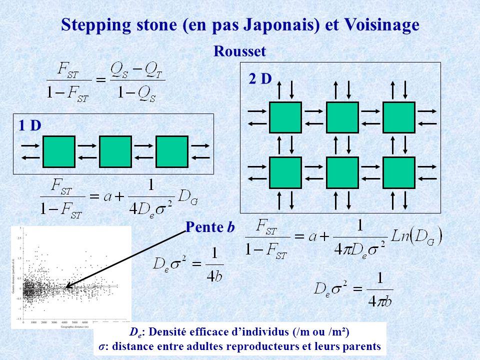 1 D 2 D Stepping stone (en pas Japonais) et Voisinage Rousset Pente b D e : Densité efficace dindividus (/m ou /m²) σ: distance entre adultes reproducteurs et leurs parents