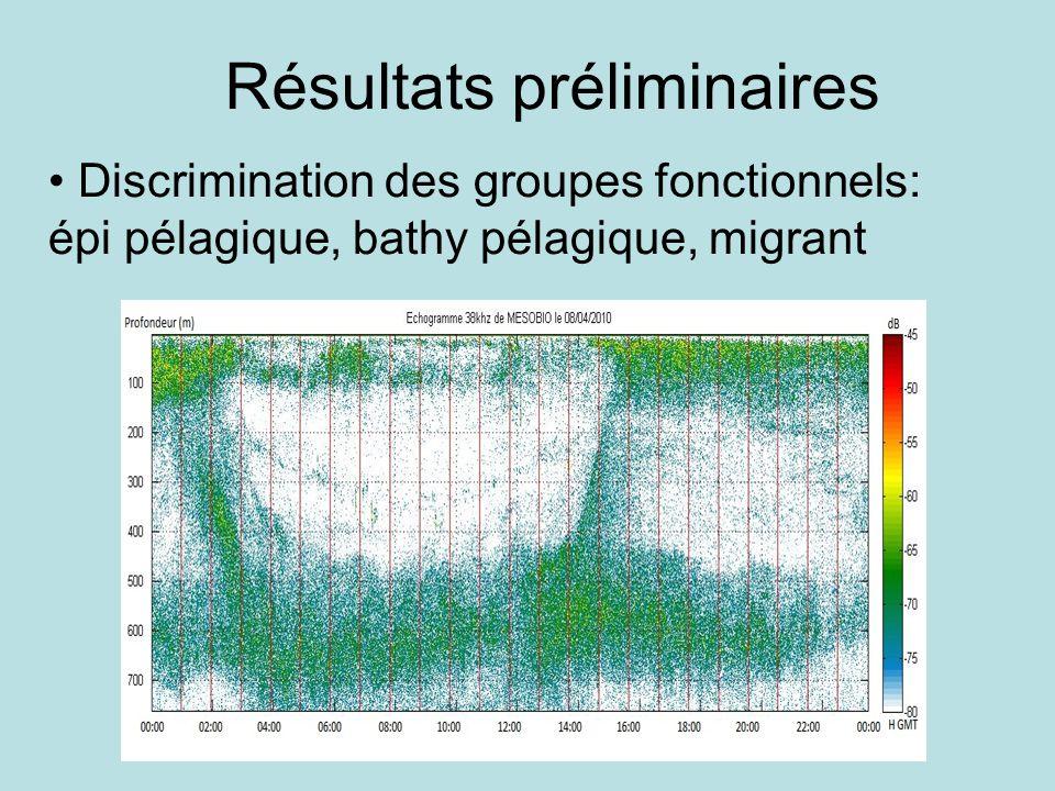 Résultats préliminaires Discrimination des groupes fonctionnels: épi pélagique, bathy pélagique, migrant