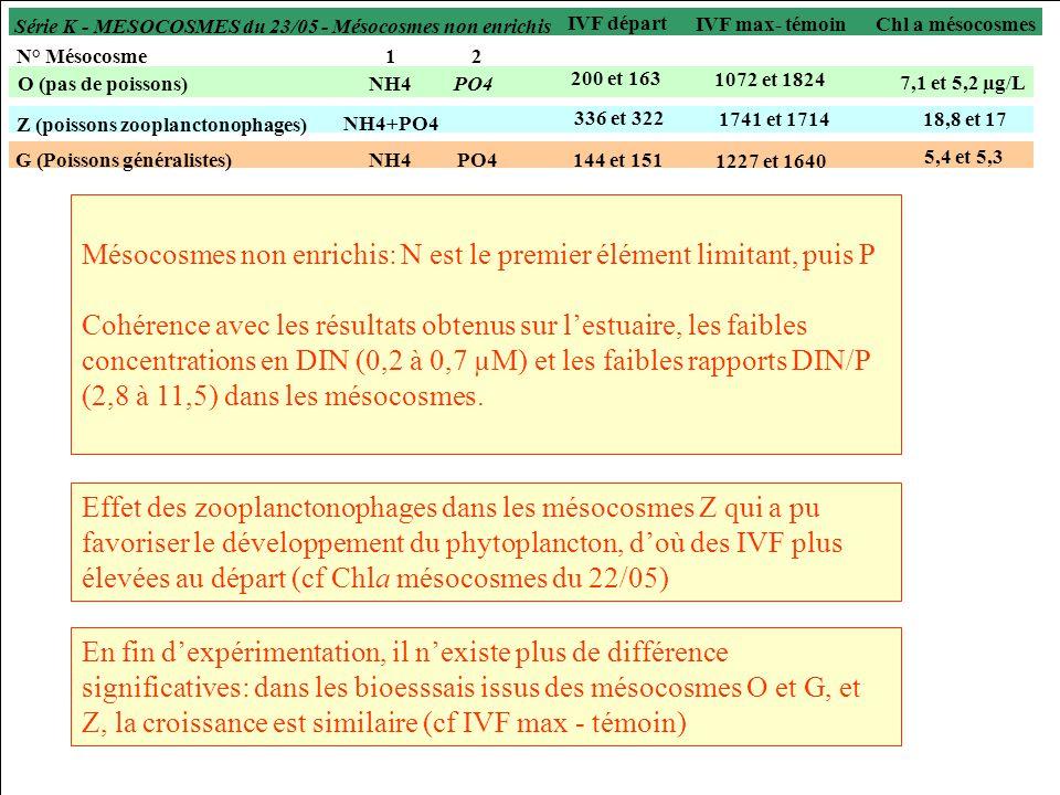 N° Mésocosme12 O (pas de poissons)NH4PO4 Z (poissons zooplanctonophages) G (Poissons généralistes)NH4PO4 NH4+PO4 Mésocosmes non enrichis: N est le premier élément limitant, puis P Cohérence avec les résultats obtenus sur lestuaire, les faibles concentrations en DIN (0,2 à 0,7 µM) et les faibles rapports DIN/P (2,8 à 11,5) dans les mésocosmes.