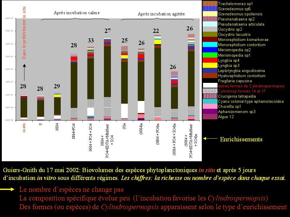 Le nombre despèces ne change pas La composition spécifique évolue peu (lincubation favorise les Cylindrospermopsis) Des formes (ou espèces) de Cylindrospermopsis apparaissent selon le type denrichissement