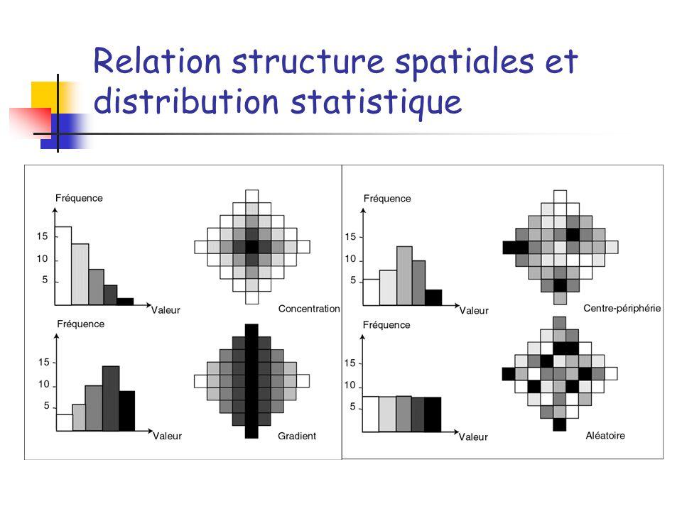 Relation structure spatiales et distribution statistique