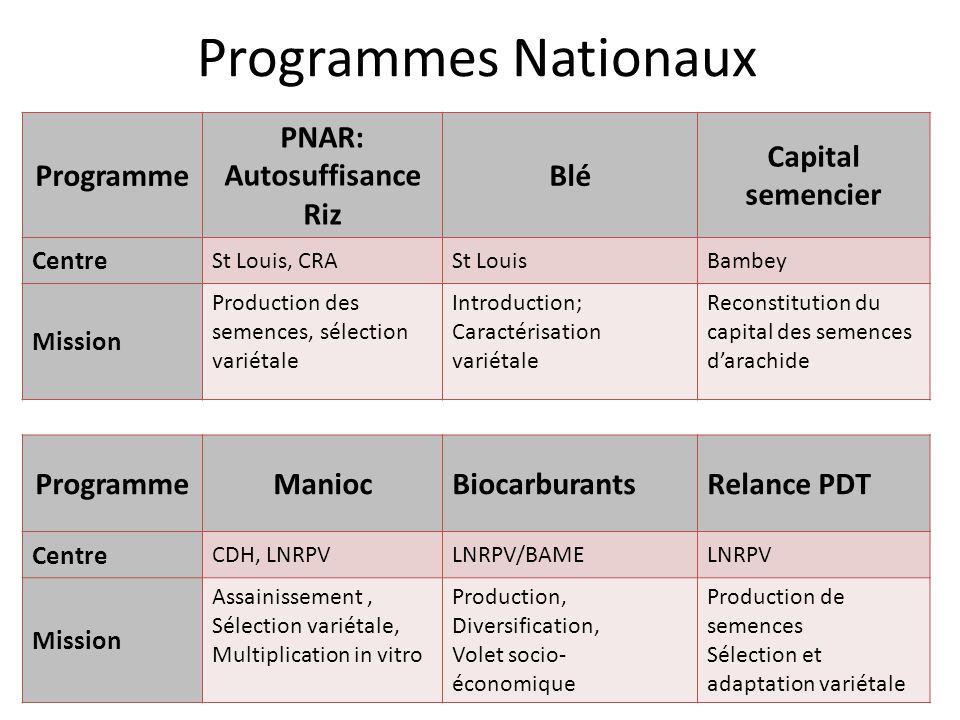 Production de semences de pomme de terre et adaptation variétale: URCI-LNRPV Multiplication in vitro de semonçons de pomme de terre; Sélection variétale; Tests dadaptation de différentes variétés à la température
