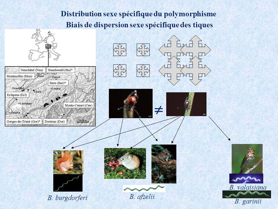 Détection des Borrelia dans les tiques Pour Borrelia burgdorferi P=0.012 0.02 0.03 0.04 0.05 0.06 0.07 0.08 FM Sex of the tick Prévalence of B.
