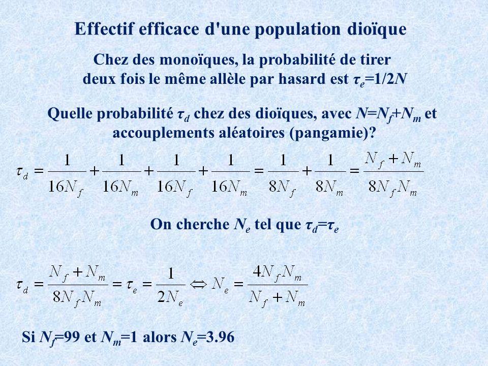Effectif efficace d une population dioïque Chez des monoïques, la probabilité de tirer deux fois le même allèle par hasard est τ e =1/2N Quelle probabilité τ d chez des dioïques, avec N=N f +N m et accouplements aléatoires (pangamie).