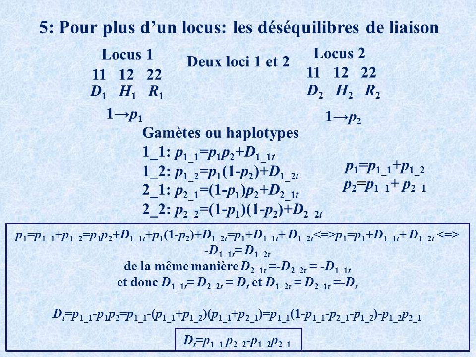 5: Pour plus dun locus: les déséquilibres de liaison Deux loci 1 et 2 11 12 22 Locus 1 Locus 2 D 1 H 1 R 1 D 2 H 2 R 2 1p 1 1p 2 Gamètes ou haplotypes 1_1: p 1_1 =p 1 p 2 +D 1_1t 1_2: p 1_2 =p 1 (1-p 2 )+D 1_2t 2_1: p 2_1 =(1-p 1 )p 2 +D 2_1t 2_2: p 2_2 =(1-p 1 )(1-p 2 )+D 2_2t p 1 =p 1_1 +p 1_2 =p 1 p 2 +D 1_1t +p 1 (1-p 2 )+D 1_2t =p 1 +D 1_1t + D 1_2t p 1 =p 1 +D 1_1t + D 1_2t -D 1_1t = D 1_2t de la même manière D 2_1t =-D 2_2t = -D 1_1t et donc D 1_1t = D 2_2t = D t et D 1_2t = D 2_1t =-D t D t =p 1_1 -p 1 p 2 =p 1_1 -(p 1_1 +p 1_2 )(p 1_1 +p 2_1 )=p 1_1 (1-p 1_1 -p 2_1 -p 1_2 )-p 1_2 p 2_1 D t =p 1_1 p 2_2 -p 1_2 p 2_1 p 1 =p 1_1 +p 1_2 p 2 =p 1_1 + p 2_1