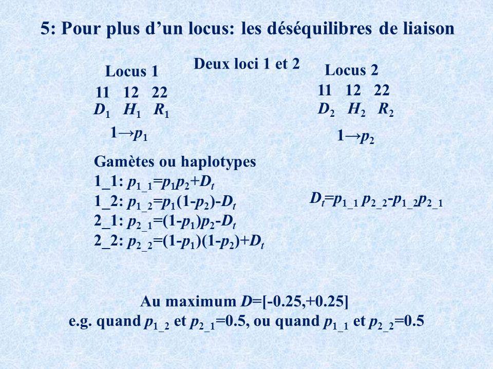 5: Pour plus dun locus: les déséquilibres de liaison Deux loci 1 et 2 11 12 22 Locus 1 Locus 2 D 1 H 1 R 1 D 2 H 2 R 2 1p 1 1p 2 Gamètes ou haplotypes 1_1: p 1_1 =p 1 p 2 +D t 1_2: p 1_2 =p 1 (1-p 2 )-D t 2_1: p 2_1 =(1-p 1 )p 2 -D t 2_2: p 2_2 =(1-p 1 )(1-p 2 )+D t Au maximum D=[-0.25,+0.25] e.g.
