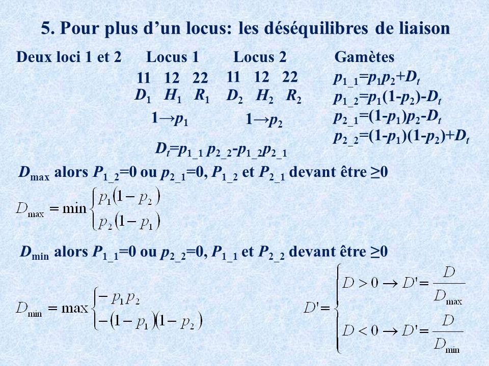 5. Pour plus dun locus: les déséquilibres de liaison Deux loci 1 et 2 11 12 22 Locus 1Locus 2 D 1 H 1 R 1 D 2 H 2 R 2 1p 1 1p 2 D max alors P 1_2 =0 o
