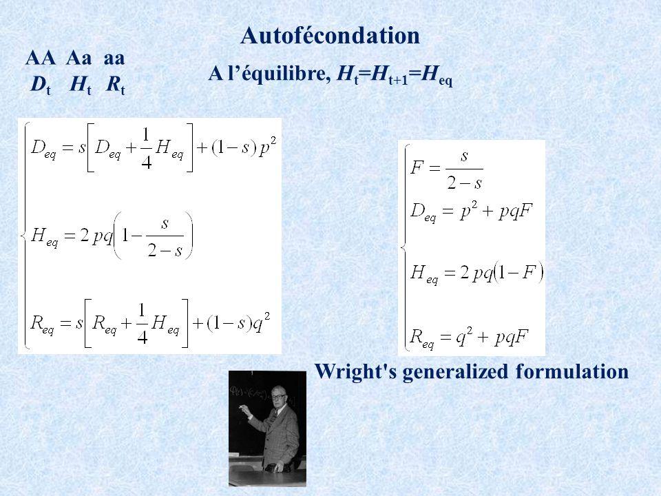 Autofécondation AA Aa aa D t H t R t A léquilibre, H t =H t+1 =H eq Wright s generalized formulation