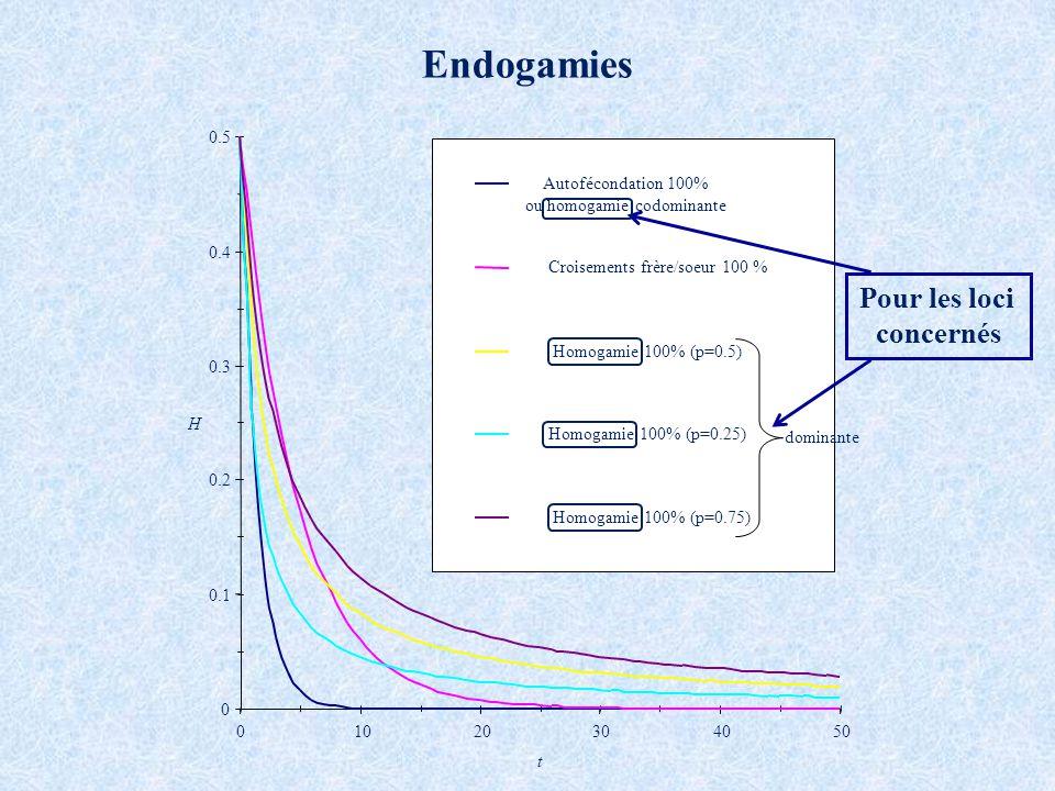 0 0.1 0.2 0.3 0.4 0.5 01020304050 t H Autofécondation 100% ou homogamie codominante Croisements frère/soeur 100 % Homogamie 100% (p=0.5) Homogamie 100% (p=0.25) Homogamie 100% (p=0.75) Endogamies dominante Pour les loci concernés