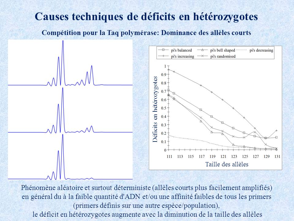 Causes techniques de déficits en hétérozygotes Compétition pour la Taq polymérase: Dominance des allèles courts Phénomène aléatoire et surtout déterministe (allèles courts plus facilement amplifiés) en général du à la faible quantité d ADN et/ou une affinité faibles de tous les primers (primers définis sur une autre espèce/population), le déficit en hétérozygotes augmente avec la diminution de la taille des allèles Déficits en hétérozygotes Taille des allèles