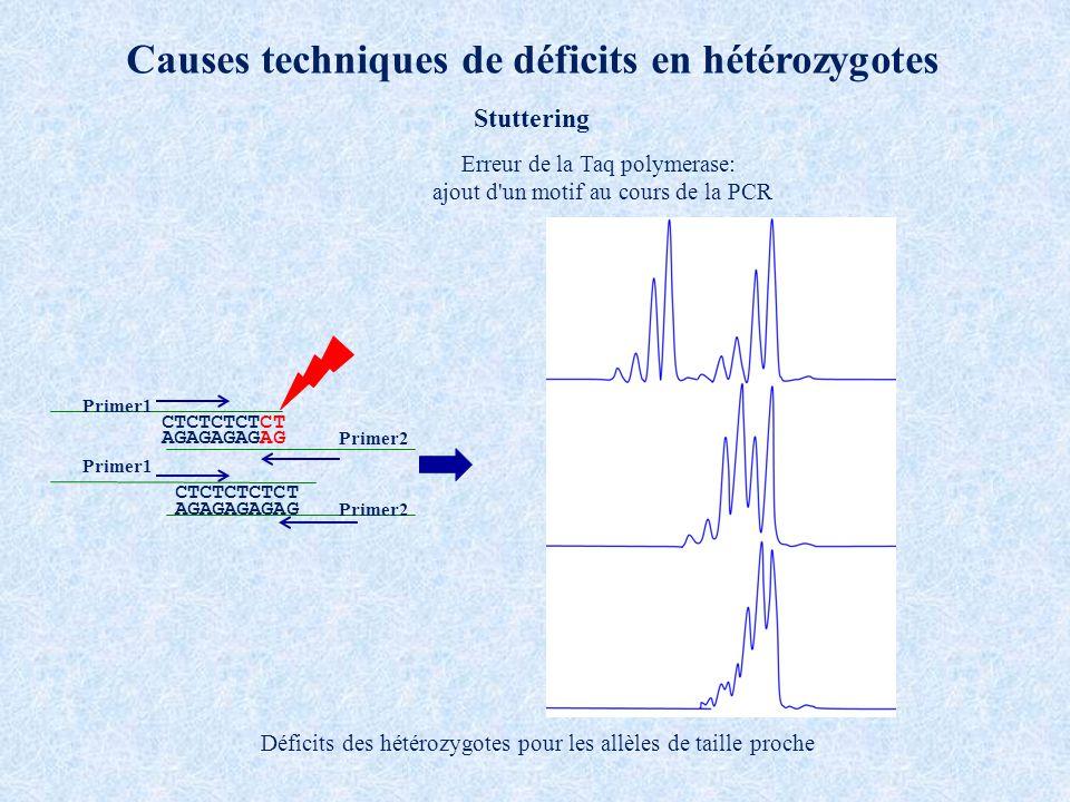 Causes techniques de déficits en hétérozygotes Stuttering CTCTCTCTCT AGAGAGAGAG Primer1 Primer2 CTCTCTCTCT AGAGAGAGAG Primer1 Primer2 Erreur de la Taq polymerase: ajout d un motif au cours de la PCR Déficits des hétérozygotes pour les allèles de taille proche