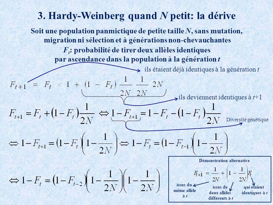 3. Hardy-Weinberg quand N petit: la dérive F t : probabilité de tirer deux allèles identiques par ascendance dans la population à la génération t ils