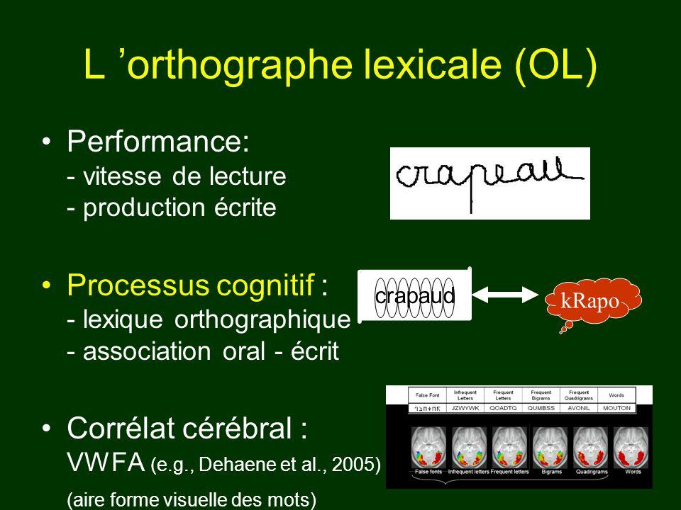Performance: - vitesse de lecture - production écrite Processus cognitif : - lexique orthographique - association oral - écrit Corrélat cérébral : VWF