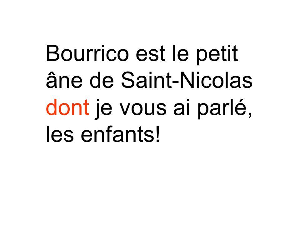 Bourrico est le petit âne de Saint-Nicolas dont je vous ai parlé, les enfants!