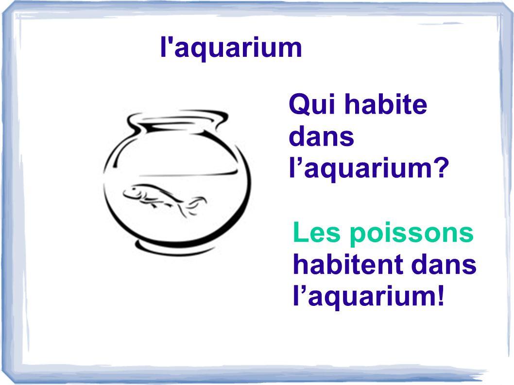 l aquarium Qui habite dans laquarium? Les poissons habitent dans laquarium!