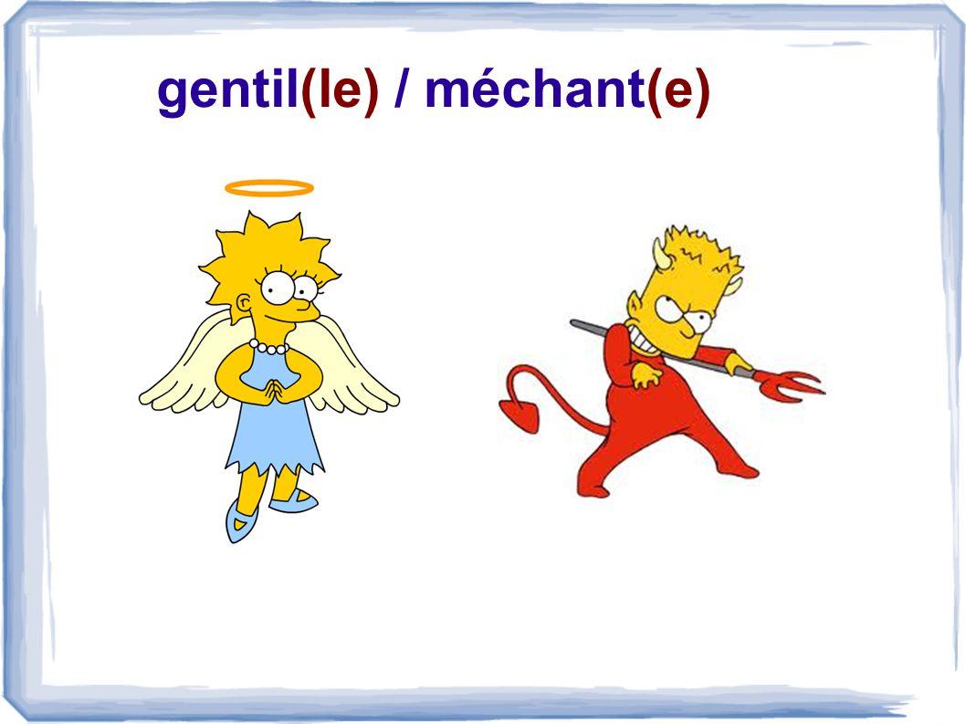 gentil(le) / méchant(e)