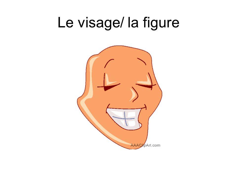 Le visage/ la figure