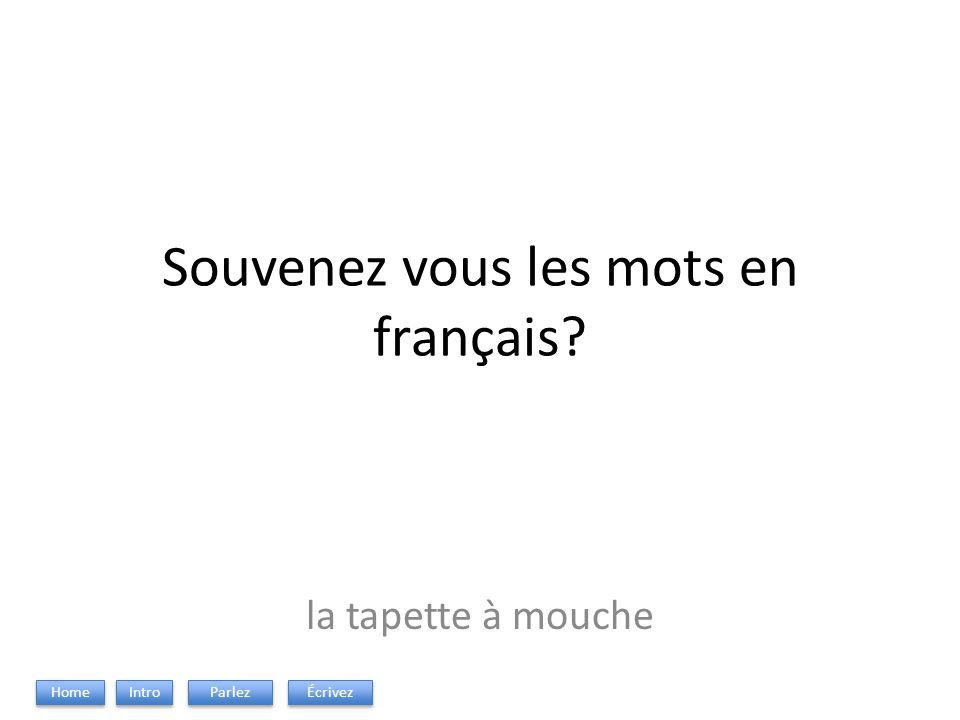 Souvenez vous les mots en français? la tapette à mouche Intro Parlez Écrivez Home